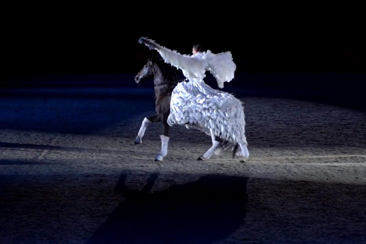 CHIO Pferde & Sinfonie